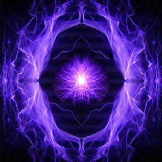 llama-violeta