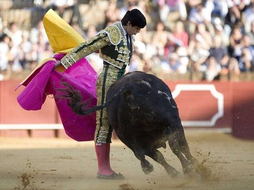 Bull-Fight-Mexico-04