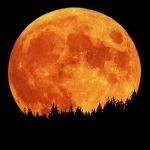 Pleine Lune du 14 Novembre 2016 et l'axe Taureau-Scorpion — -Luna Llena el 14 de noviembre de 2016 y el eje Tauro-Escorpio.
